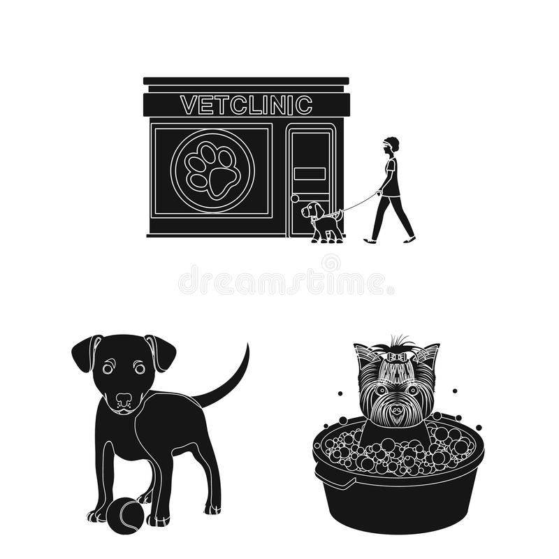 Pet black icons in set collection for design. Care and education vector symbol stock web illustration. Pet black icons in set collection for design. Care and royalty free illustration