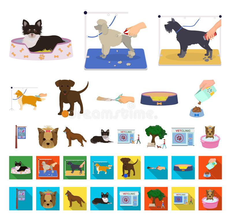 Pet cartoon,flat icons in set collection for design. Care and education vector symbol stock web illustration. Pet cartoon,flat icons in set collection for royalty free illustration