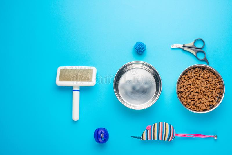 Pet, cat, food and accessories of cat life flat lay, with space for design, on blue background. Animal object assortment kitten play toy bowl care top accessory royalty free stock photos