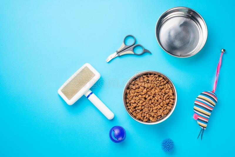 Pet, cat, food and accessories of cat life flat lay, with space for design, on blue background. Animal object assortment kitten play toy bowl care top accessory royalty free stock photo