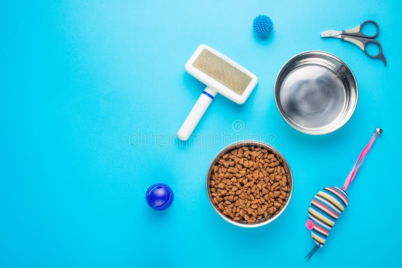 Pet, cat, food and accessories of cat life flat lay, with space for design, on blue background. Animal object assortment kitten play toy bowl care top accessory stock image
