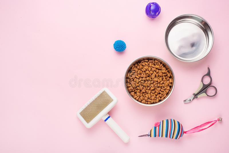Pet, cat, food and accessories of cat life flat lay, with space for design, on a pink background. Animal object assortment kitten play toy bowl care top stock photography