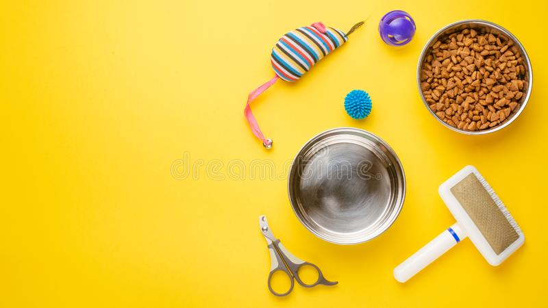 Pet, cat, food and accessories of cat life flat lay, with space for design, on yellow background. Animal kitten domestic top bowl care play eat dry assortment stock image