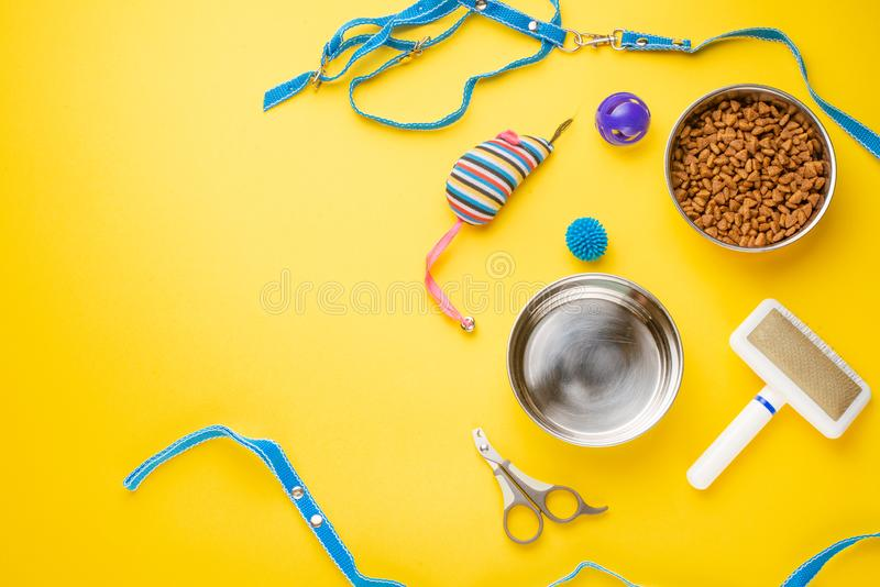 Pet, cat, food and accessories of cat life flat lay, with space for design, on yellow background. Animal kitten domestic top bowl care play eat dry assortment royalty free stock image