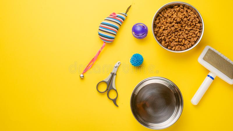 Pet, cat, food and accessories of cat life flat lay, with space for design, on yellow background. Animal kitten domestic top bowl care play eat dry assortment stock photography