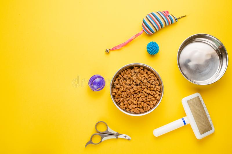 Pet, cat, food and accessories of cat life flat lay, with space for design, on yellow background. Animal kitten domestic top bowl care play eat dry assortment stock photo
