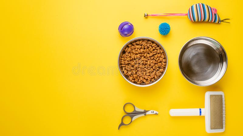 Pet, cat, food and accessories of cat life flat lay, with space for design, on yellow background. Animal kitten domestic top bowl care play eat dry assortment royalty free stock photo