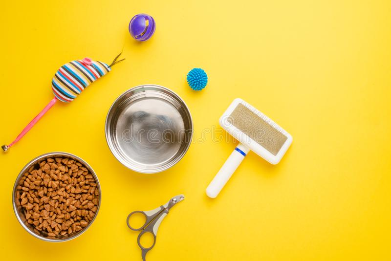 Pet, cat, food and accessories of cat life flat lay, with space for design, on yellow background. Animal kitten domestic top bowl care play eat dry assortment royalty free stock photos