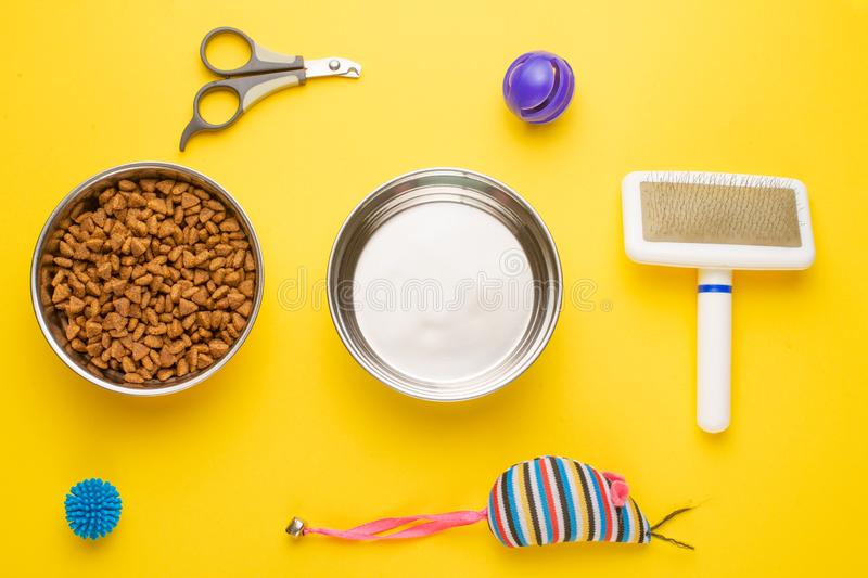 Pet, cat, food and accessories of cat life flat lay, on a yellow background. Background for design. Animal kitten domestic top bowl care play eat dry assortment royalty free stock photo