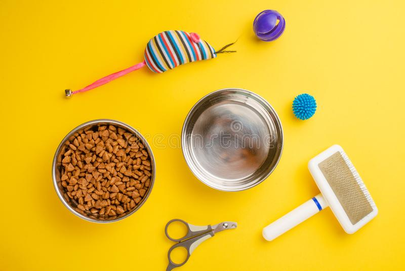 Pet, cat, food and accessories of cat life flat lay, on a yellow background. Background for design. Animal kitten domestic top bowl care play eat dry assortment royalty free stock image
