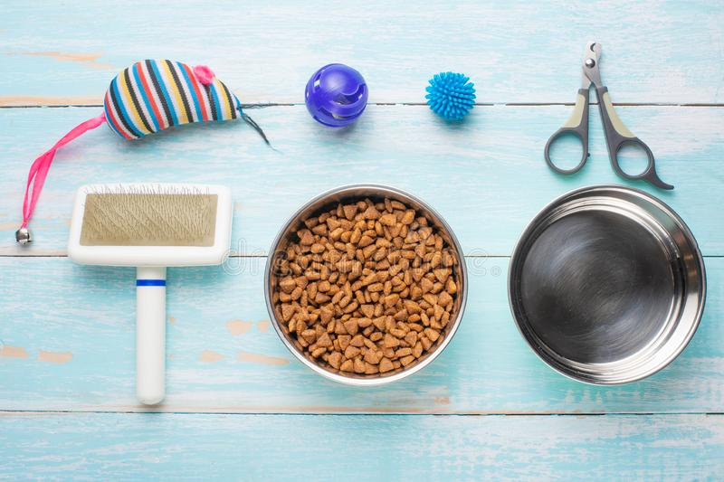 Pet, cat, food and accessories of cat's life flat lay, on a blue background. Background for design. Animal object assortment kitten play toy bowl care top stock images
