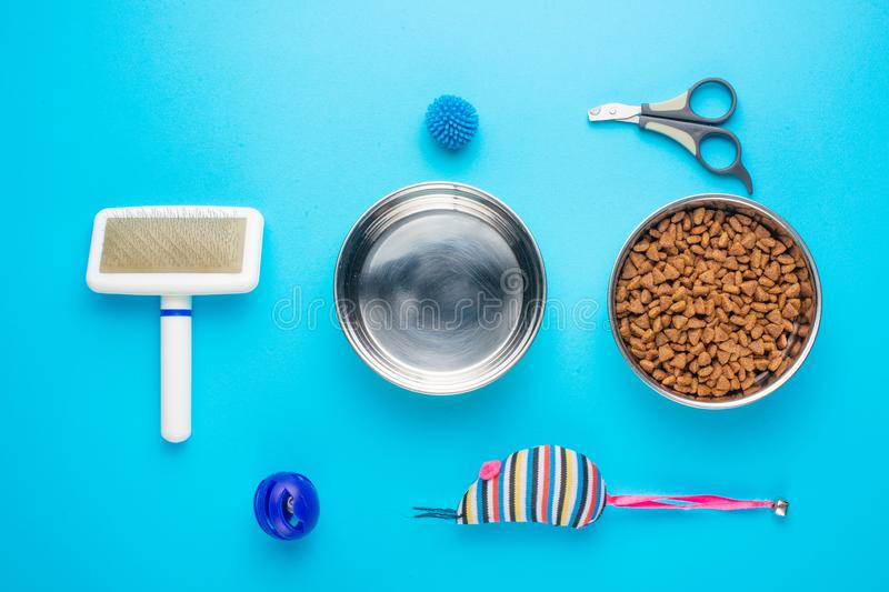 Pet, cat, food and accessories of cat's life flat lay, on a blue background. Background for design. Animal object assortment kitten play toy bowl care top royalty free stock photography