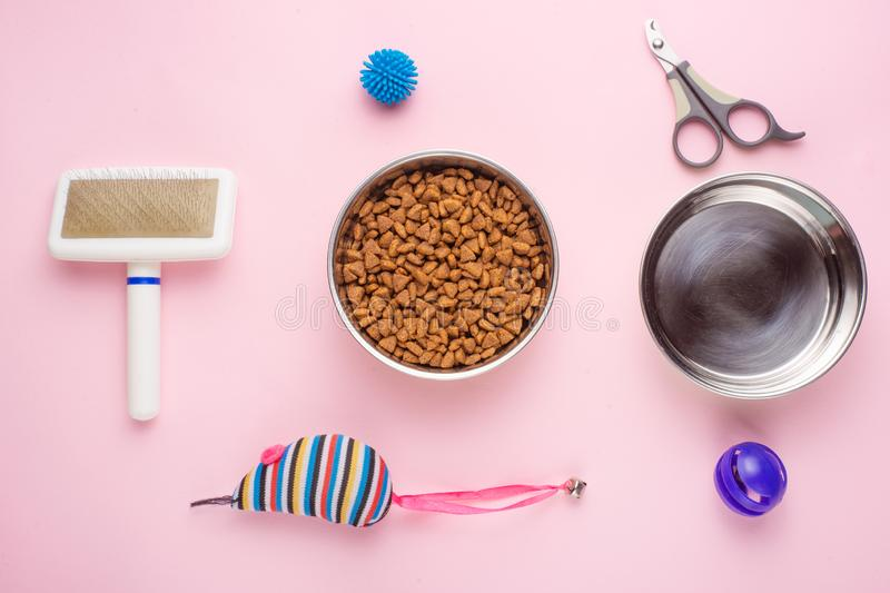 Pet, cat, food and accessories of cat's life flat lay, on a pink background. Background for design. Animal kitten domestic top bowl care play eat dry stock photos