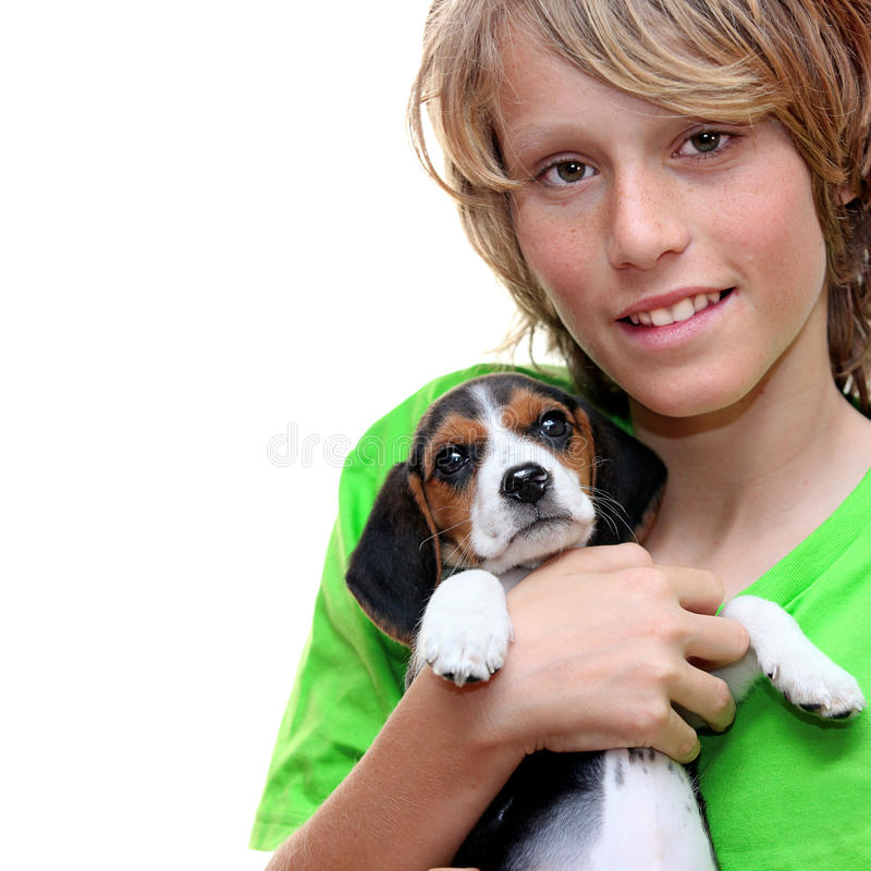 Download Pet child dog beagle stock photo. Image of boys, puppy - 19316524