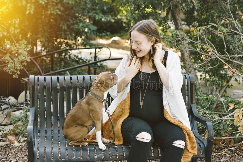 Pregnant Dog Owner Smiles at Her Small Dog on a Park Bench Happy Smile royalty free stock image