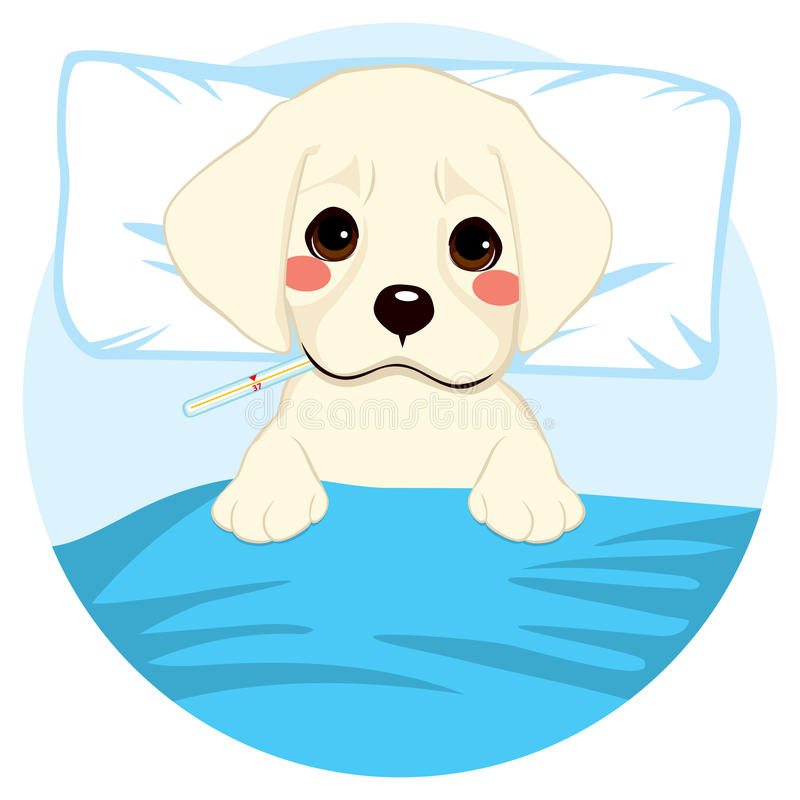 Pet Dog Ill. Cute little pet puppy dog ill in bed with thermometer stock illustration
