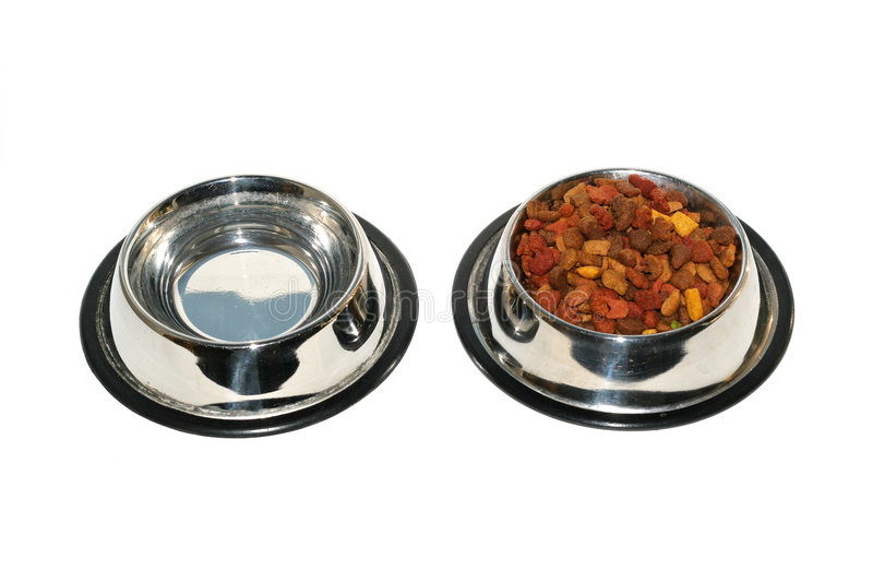 Pet food. Isolated on white background stock image