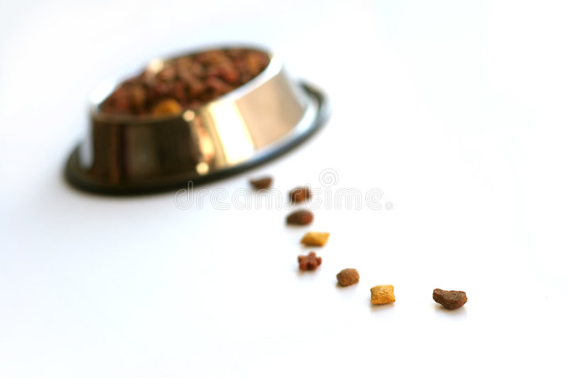 Pet food. Isolated on white background royalty free stock images