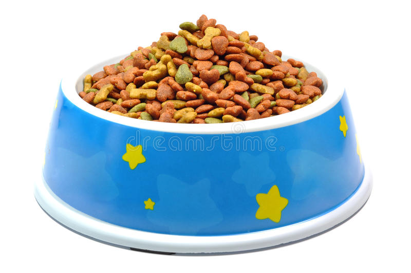 Pet food in bowl. royalty free stock images