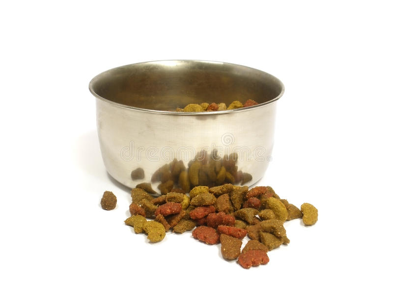 Pet food in bowl royalty free stock photos