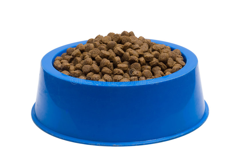 Pet Food Bowl Isolated White on Background royalty free stock images