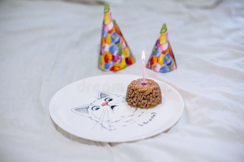 Pet food cake for cat birthday stock photography