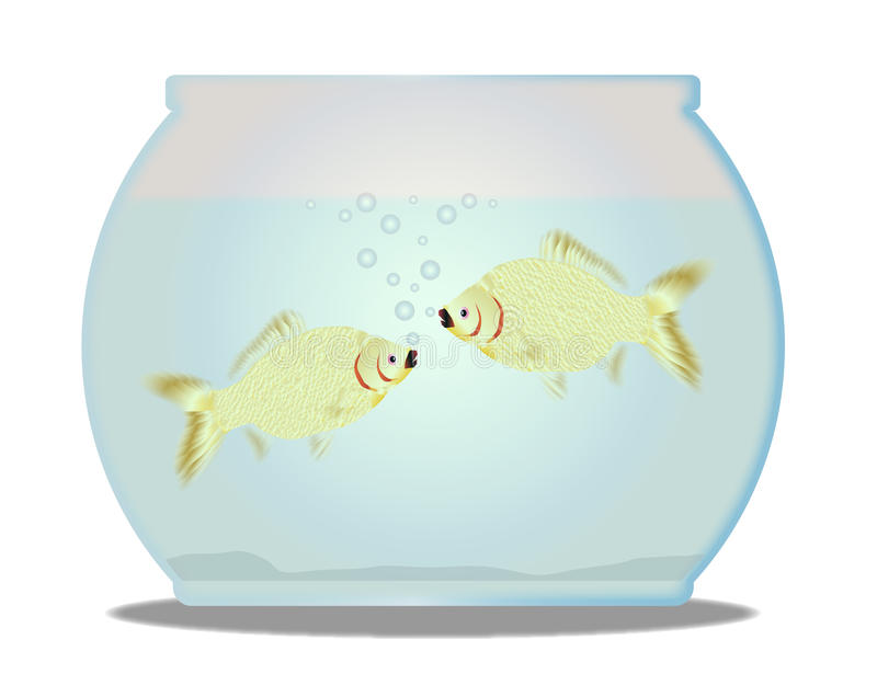 Pet Goldfish Bowl. A trpical pet goldfish bowl with fish over a white background royalty free illustration