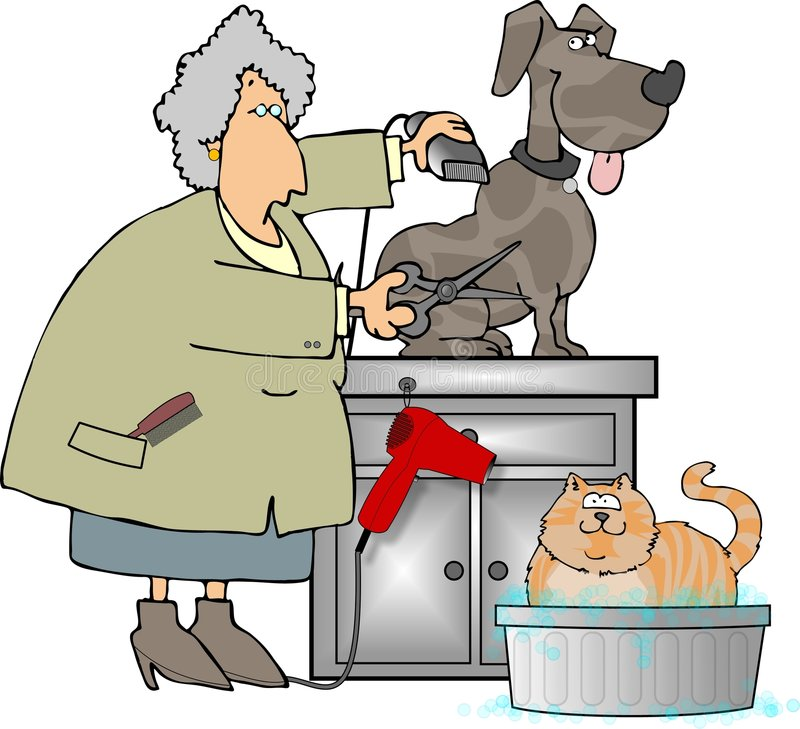 Pet Groomer stock illustration