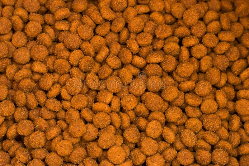 Pet kibbles close-up. Dog and cat dry food royalty free stock image