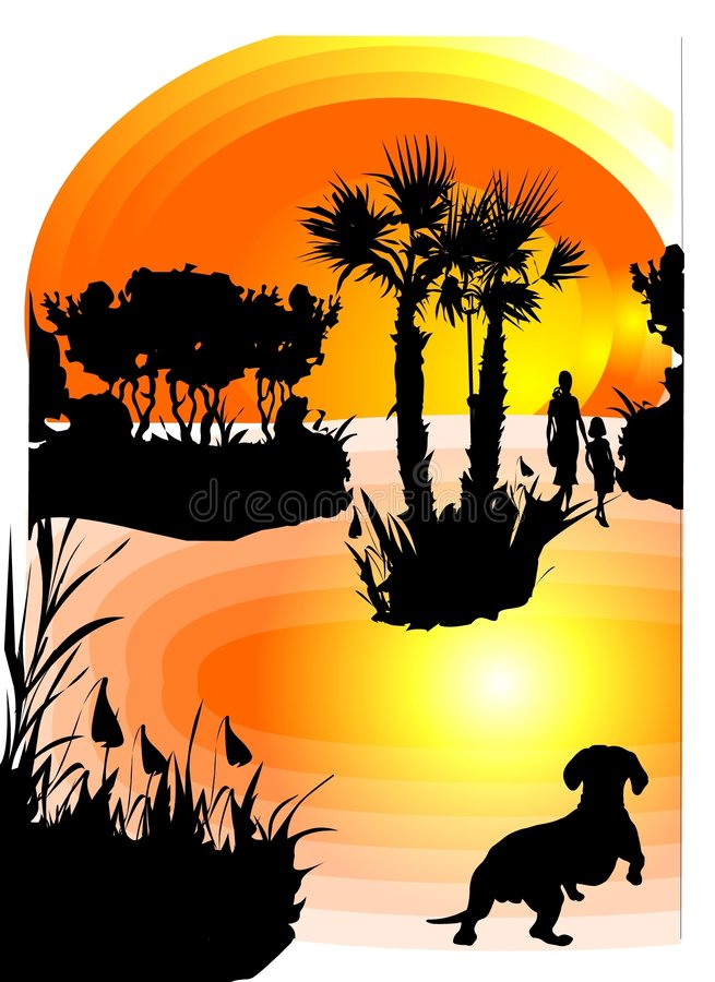 Pet Looking At Sunset Royalty Free Stock Images