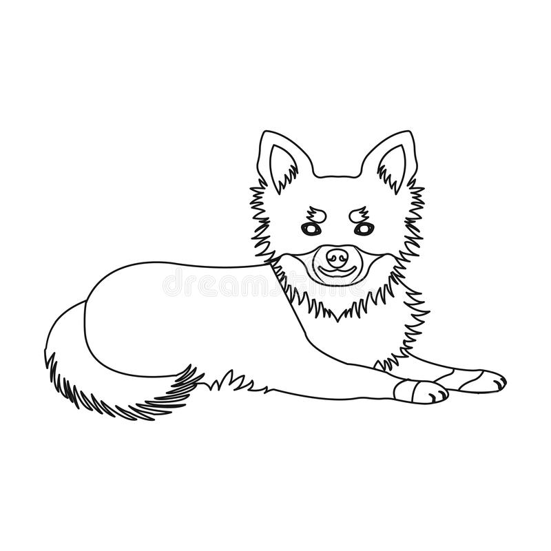 A pet, a lying dog. Pet ,dog care single icon in outline style vector symbol stock illustration web. A pet, a lying dog. Pet,dog care single icon in outline vector illustration