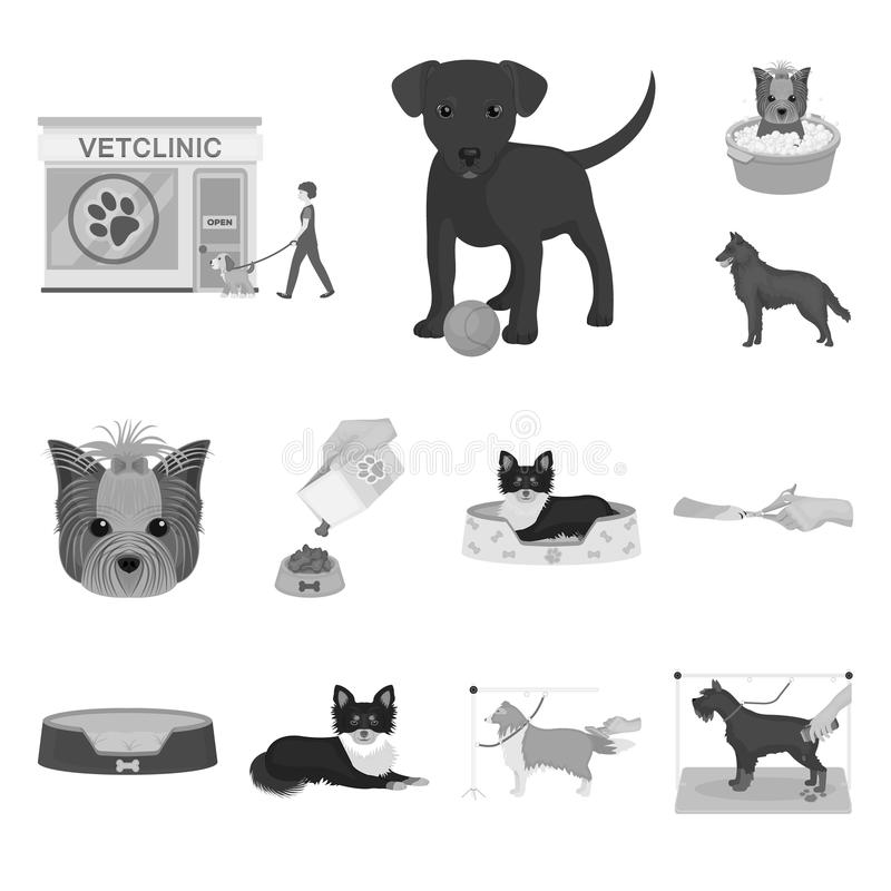 Pet monochrome icons in set collection for design. Care and education vector symbol stock web illustration. Pet monochrome icons in set collection for design vector illustration