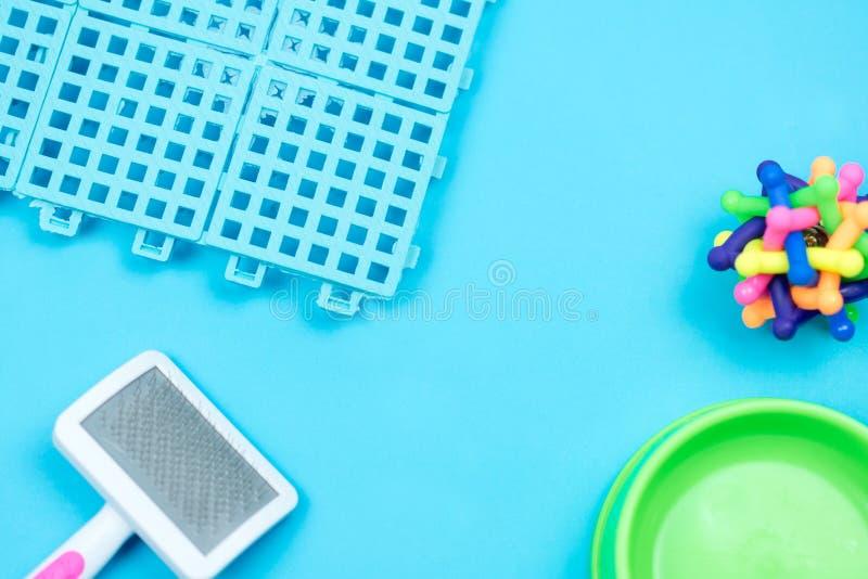 Pet o revestimento plástico para o animal de estimação com os acessórios no fundo azul fotos de stock royalty free