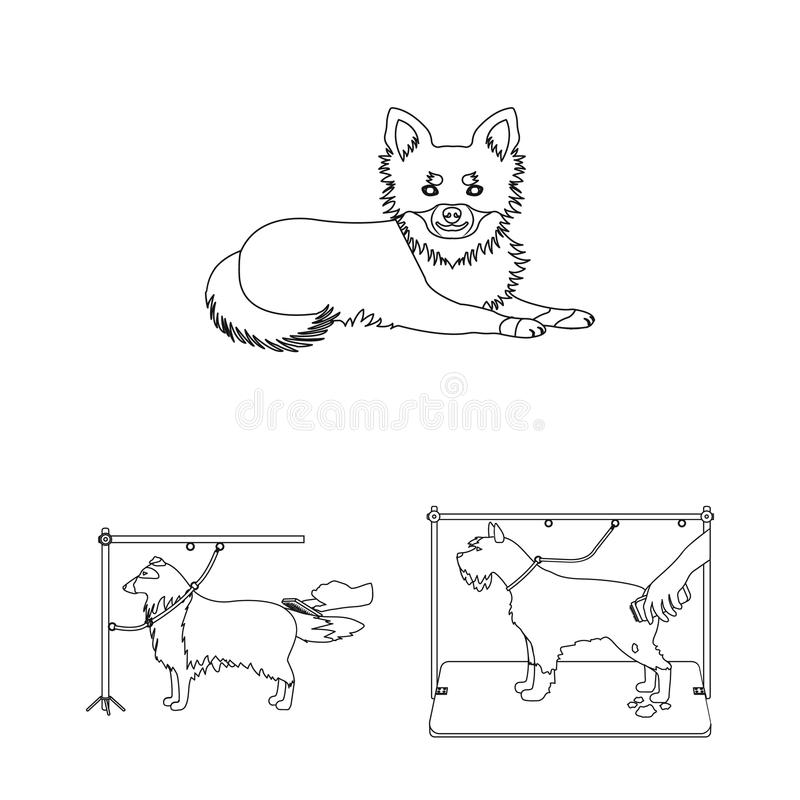 Pet outline icons in set collection for design. Care and education vector symbol stock web illustration. Pet outline icons in set collection for design. Care stock illustration