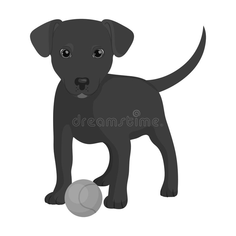 Pet, puppy dog with a ball. Pet,dog care single icon in monochromt style vector symbol stock illustration web. Pet, puppy dog with a ball. Pet,dog care single vector illustration