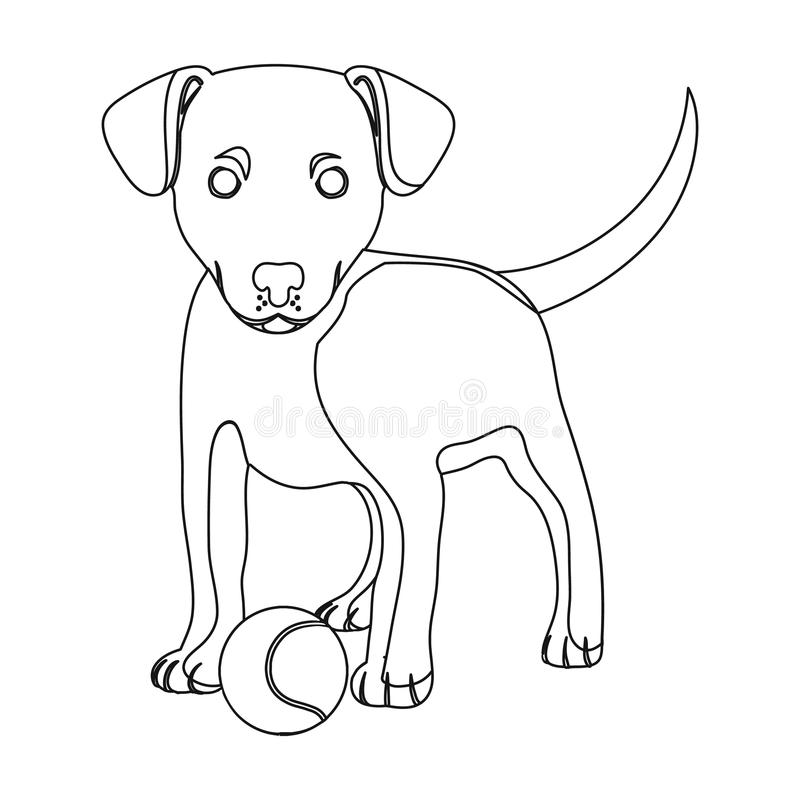 Pet, puppy dog with a ball. Pet,dog care single icon in outline style vector symbol stock illustration web. Pet, puppy dog with a ball. Pet,dog care single icon vector illustration