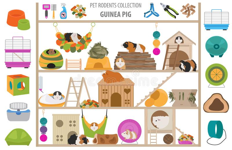 Pet rodents home accessories icon set flat style isolated on white. Healthcare collection. Create own infographic about guinea pig. Pet rodents home accessories royalty free illustration