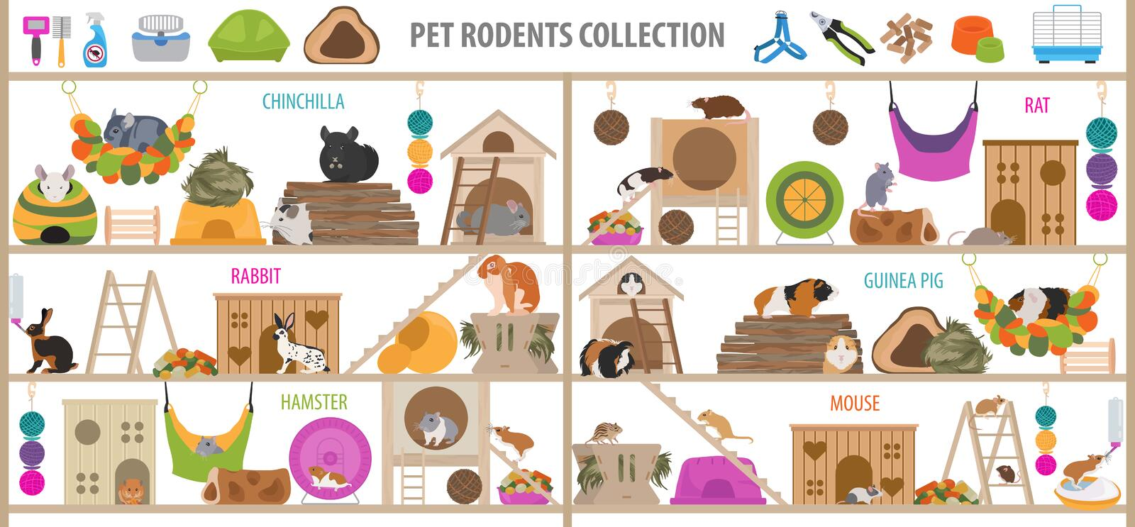 Pet rodents home accessories icon set flat style isolated on white. Healthcare collection. Create own infographic about guinea pig vector illustration