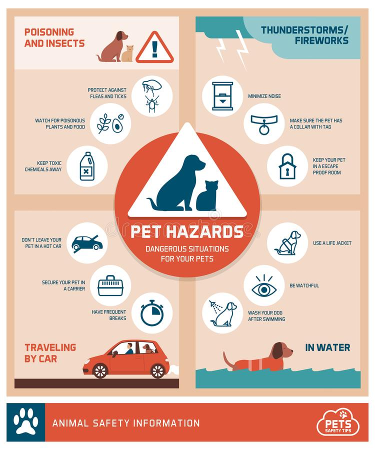 Pet safety tips. Infographic with icons: how to protect your pets from hazards vector illustration