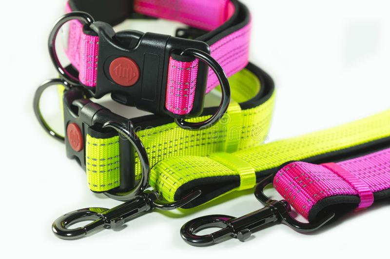 Pet supplies about Collars and leashes on white background. stock images