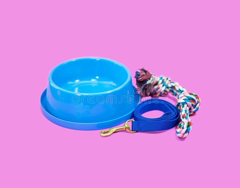 Pet supplies concept. Bowl, pet leash and rope on pink royalty free stock photography