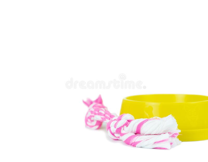 Pet supplies set about bowl, rope for dog or cat. On white background royalty free stock photography