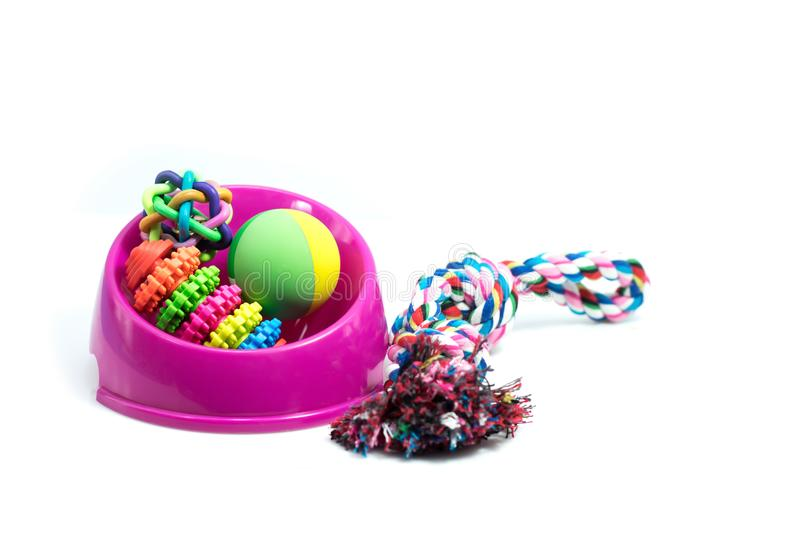 Pet supplies set about bowl, rope, rubber toys for dog royalty free stock photo