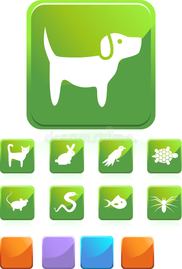 Pet web buttons - square vector illustration
