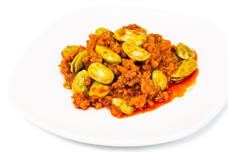 Petai dos tumis do sambal, um prato tradicional popular em Malásia e Indonésia fotos de stock royalty free