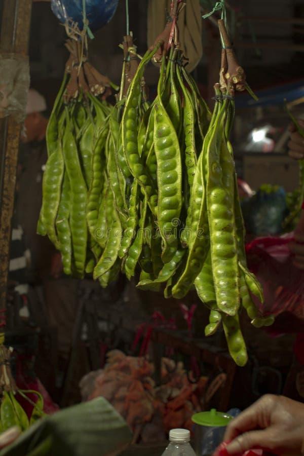 Petai- eller parkiaspeciosaen i traditionell marknad fotografering för bildbyråer