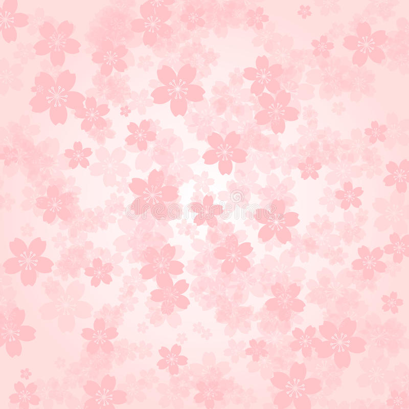 Petal background Pink cherry blossoms vector illustration