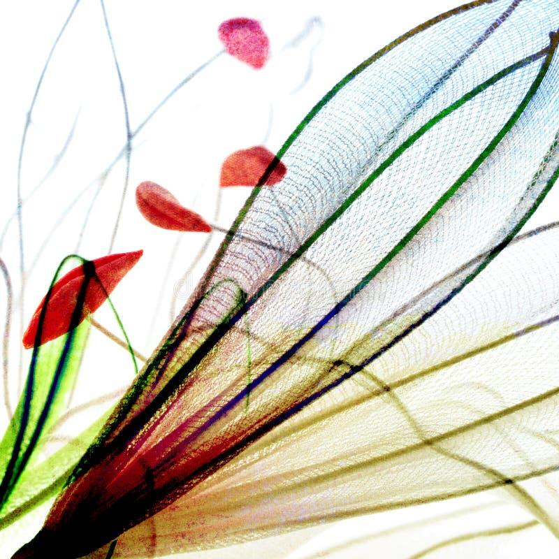 Petal and pollen design vector illustration