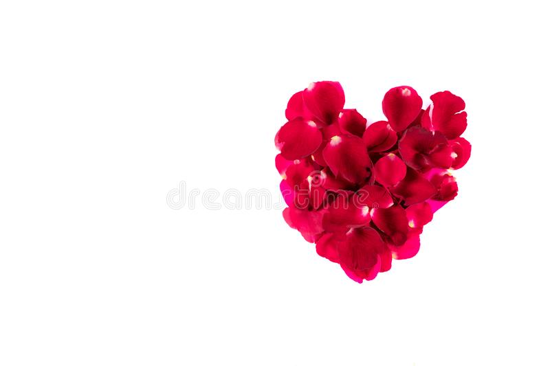Petaled rose colored flowers that are arranged together to form. A heart. And gave each other in important dates. And a white background clipping path stock image