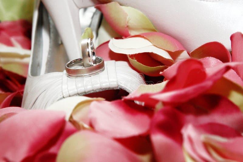 Download Petali fotografia stock. Immagine di pattino, pattini - 7323510